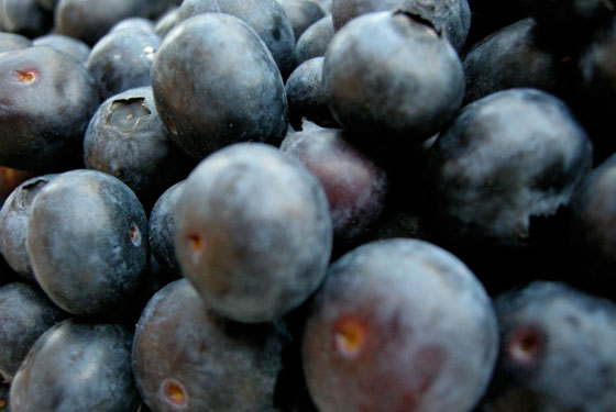 560x375_blueberries