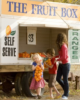 Roadside fruit stand, The Murray